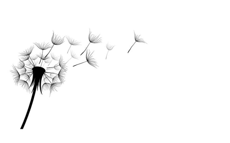 広島県三原市でヘアサロンをお探しならシードヘアー(SEED_HAIR)